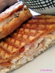 Jar - Turkey Panini