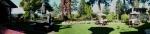 Crow - panorama